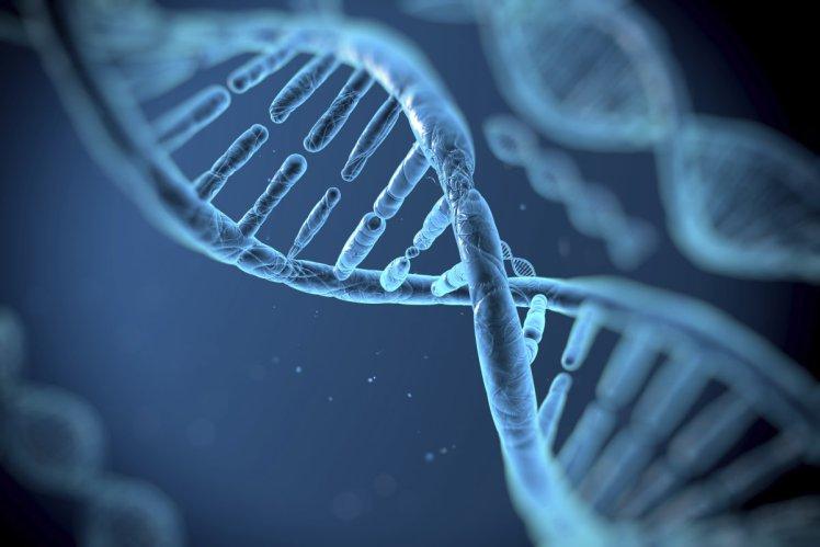 未來生技:大數據浪潮下的基因定序、精準醫療|大和有話說