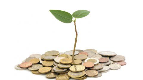 為什麼新創公司常在幾輪VC融資後,出現後繼無力、成長趨緩的現象?|大和有話說