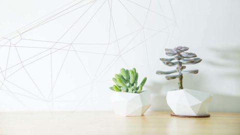 【嘖嘖 X NATURAL】一只盆器,從新認識數位製造