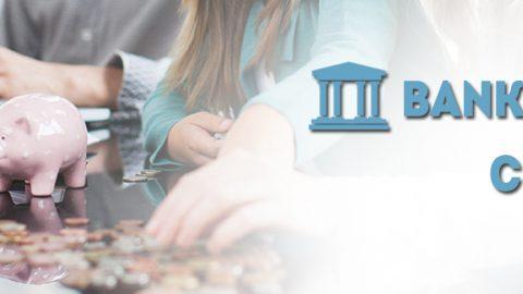 An Ultimate Guide to CSP Bank Mitra | SBI Bank kiosk