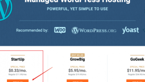 SiteGround 幫助疫情,主機特惠每月 $0.33美元,建立線上網站的好幫手