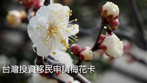 台灣投資移民方案:高級專業人士或投資1500台幣可申請梅花卡