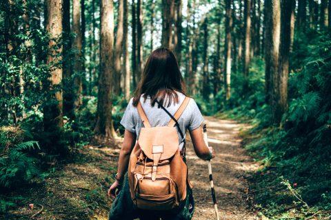 最強夏季避暑攻略!Booking.com公開「全台五大森林避暑勝地」 造訪「南投鹿谷」銀杏森林,漫步「花蓮太魯閣」美景步道
