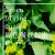 綠色餐飲指南 的簡介相片