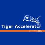 台荷加速器 Tiger Accelerator 的簡介照片